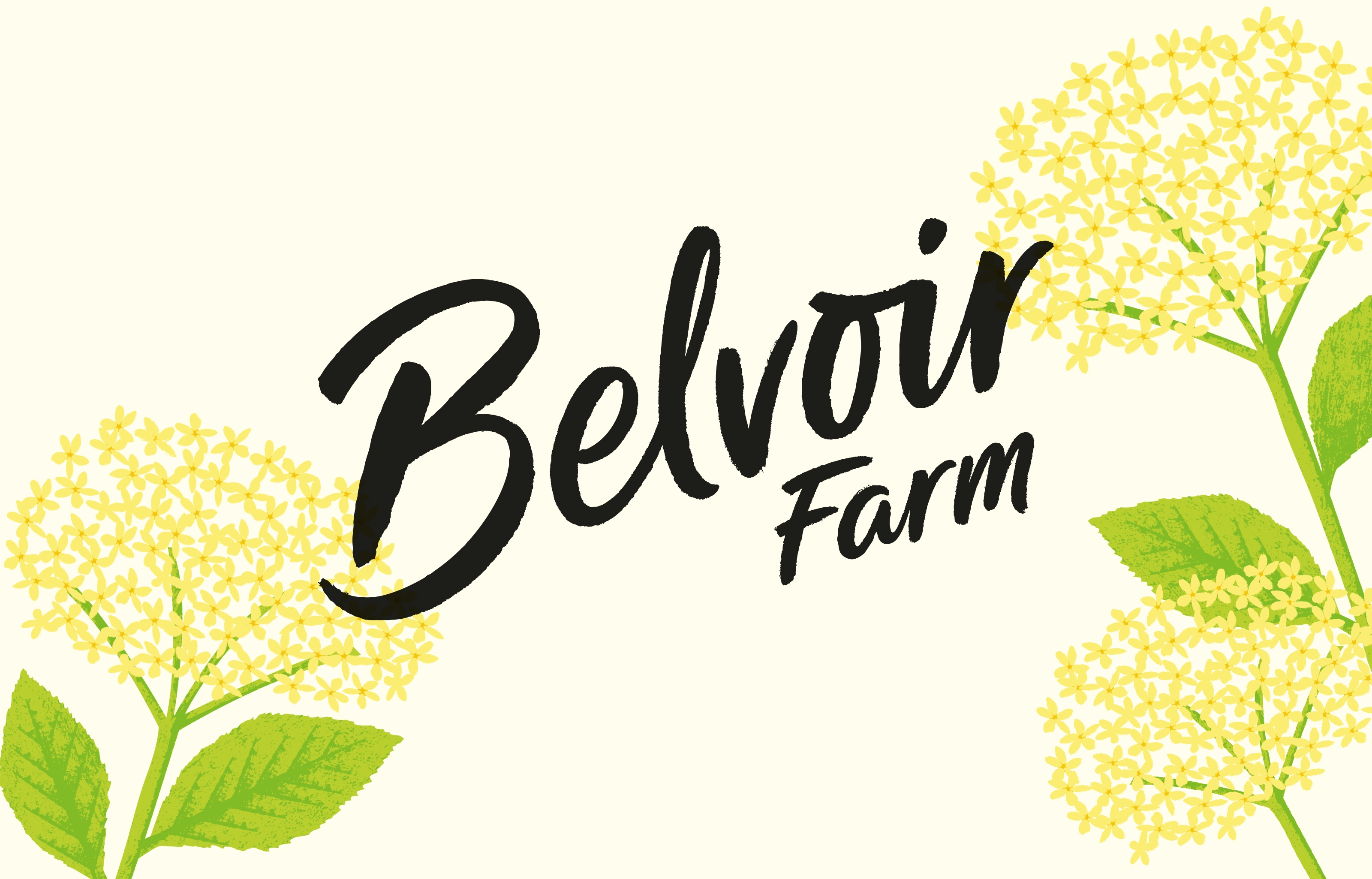 Belvoir Logo No Texture