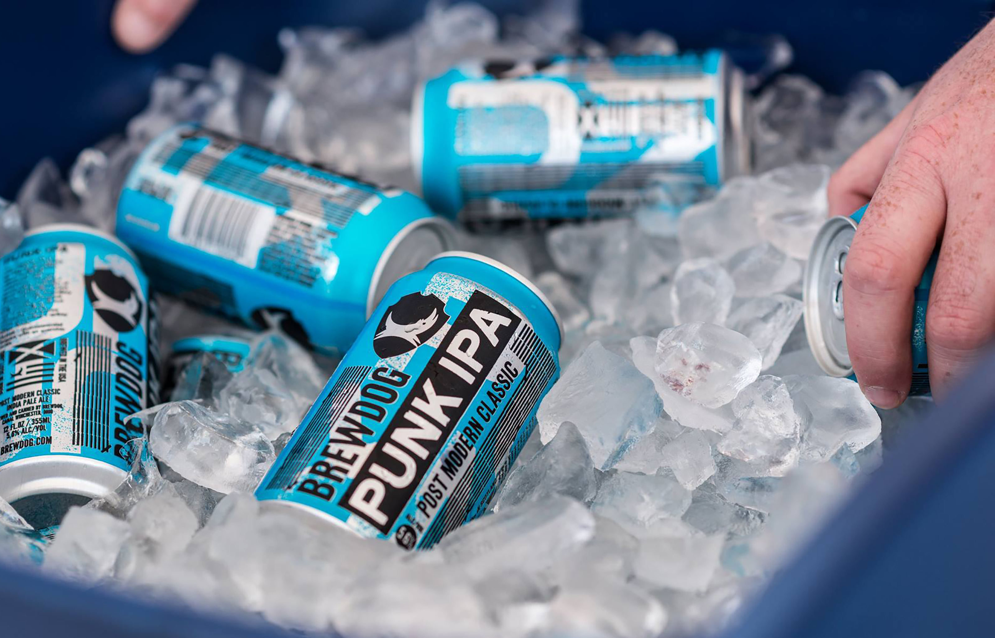 Brewdog Punk Ice